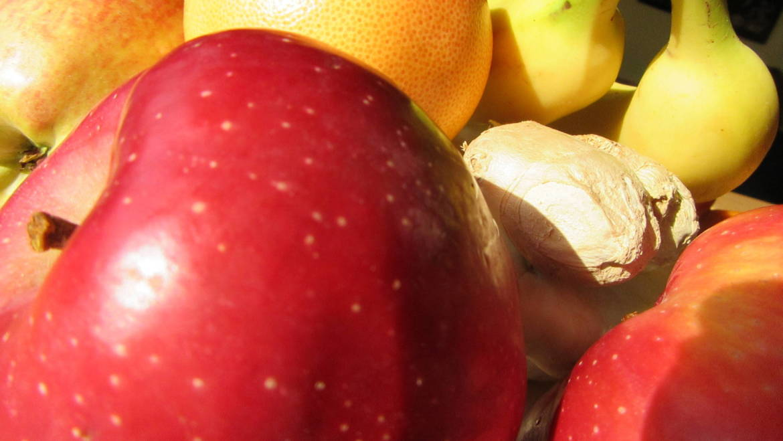 Basics on Nutrition and Health